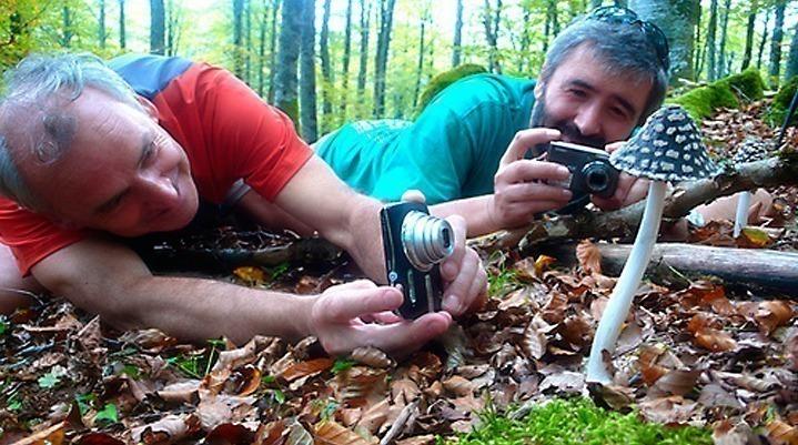 fotografiando setas en el monte