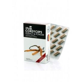 CÓRDICEPS (CORDYCEPS SINENSIS) CORDYCEPS