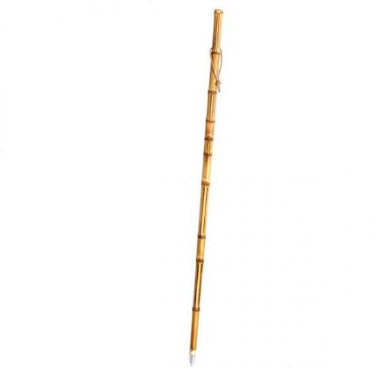 Bamboo cane for mushroom foraging