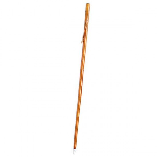 Dark brown cane for mushroom foraging