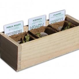 Kit Cultivo Hierbas Aromáticas
