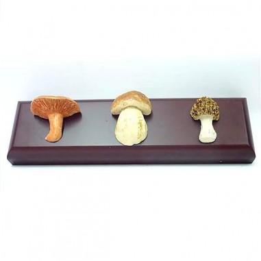 Stand with 3 mushroom replicas
