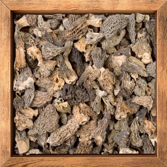 Dehydrated morels