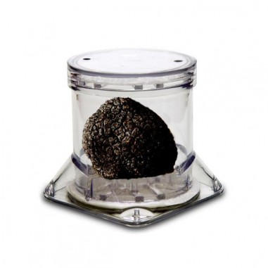 Display container for truffle TUBERPACK