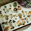 Adhesivos setas vintage 100 ud