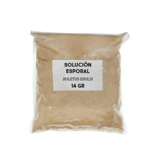 Solución esporal de apoyo - Boletus edulis