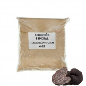 Solución esporal de apoyo - Tuber melanosporum
