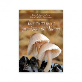 Mushrooms in the province of Malaga