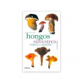 Wild mushrooms. Tickets and chanterelles