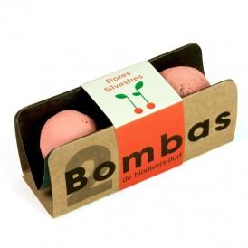 Bombas de semillas silvestres
