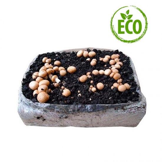 Organic alpaca Portobello mushroom 7 kg