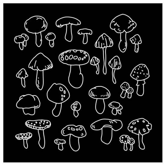 Apron funghi