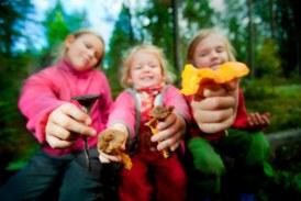 ✅ Consejos para salir a buscar setas con niños