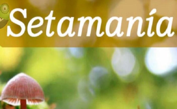Setamania, una aplicación móvil muy útil para los seteros