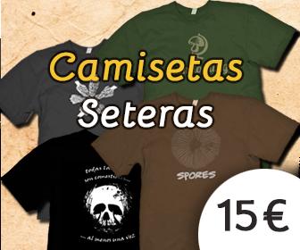 336×280 camisetas