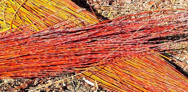 mimbre-fibras