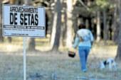 Nueva regulación micológica en Castilla y León