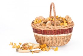 ✅ Cual es la forma ideal que debe tener una cesta de mimbre para setas?
