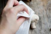 ✅ Cómo limpiar las setas ¿Cual es la mejor forma?