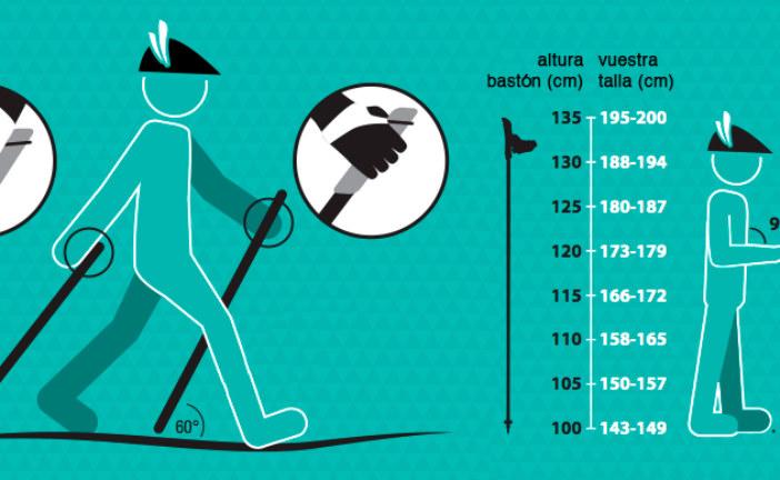 ✅ Bastones de senderismo, cómo utilizarlos correctamente