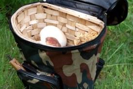 ✅ Una mochila de setas para cada estilo de recolección