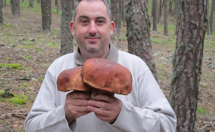 ✅ José A. Galiana, el arte de cocinar con setas