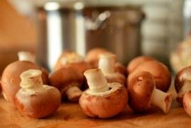Mico gastronomía, cocinar setas comestibles