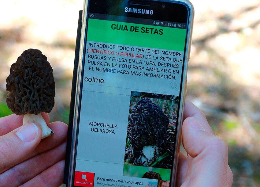 ✅ Entrevista con Carlos Llop, creador de la app Guía de Setas 
