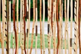 Guía para comprar un bastón de madera