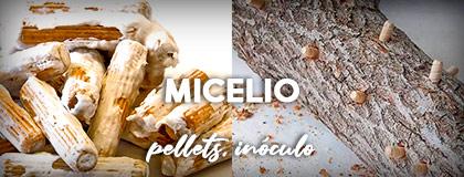 Micelio en pellets, inóculos